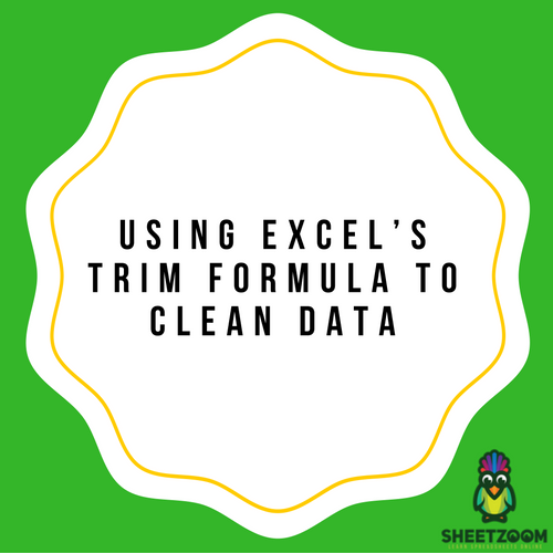 Using Excel's TRIM Formula To Clean Data